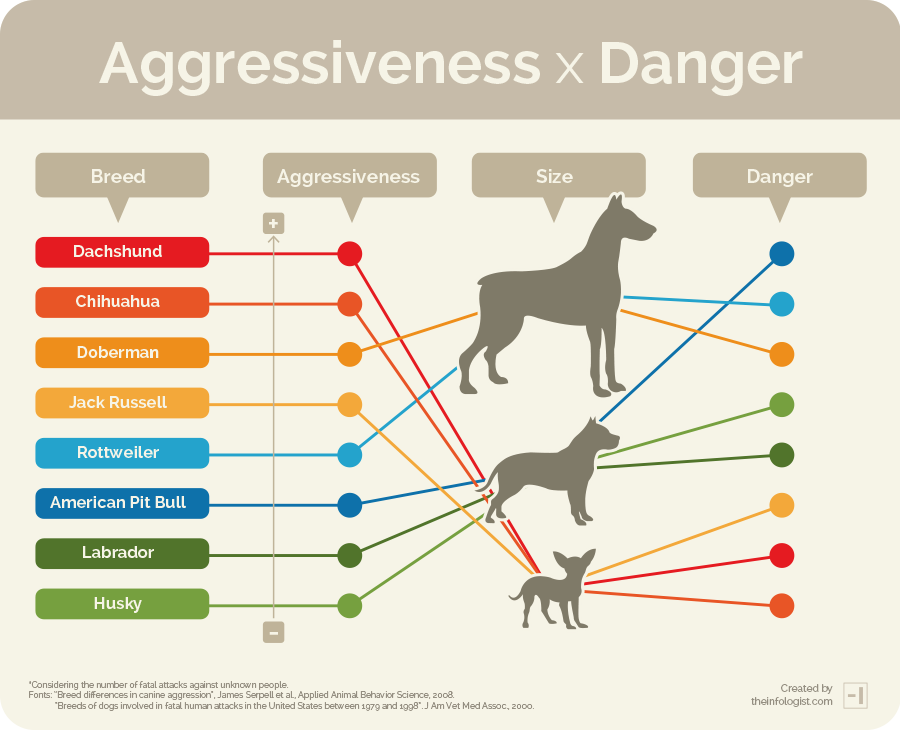 Terrierman rips into dog aggression study | Dachshund News