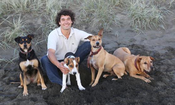 Doggy-dan online dog trainer