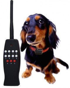 remote-control-dog-training-collar