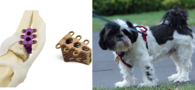 3d printed knee implants for dogs