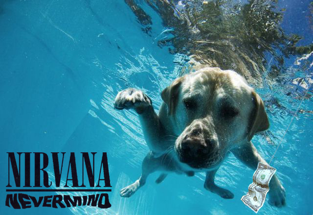 can dogs eat this - nevermind poster