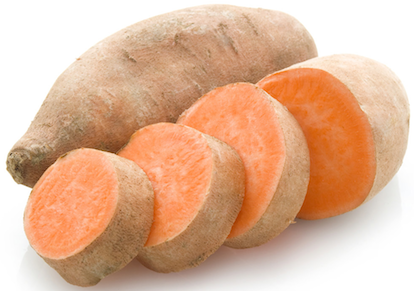 main - can dogs eat sweet-potato