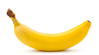 bananas for dogs