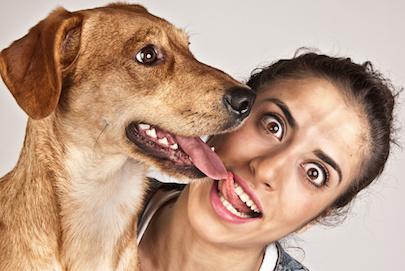 dog and human kissing