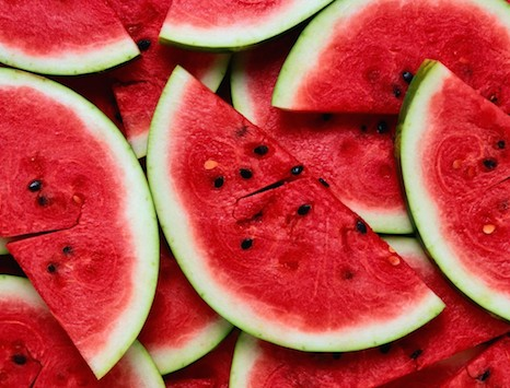 watermelon can dogs eat