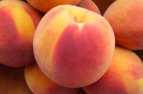 Peach fruit can dogs eat it