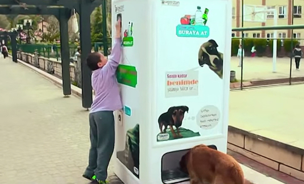 Turkey - stray-dog-food-vending-machine-recycling-pugedon