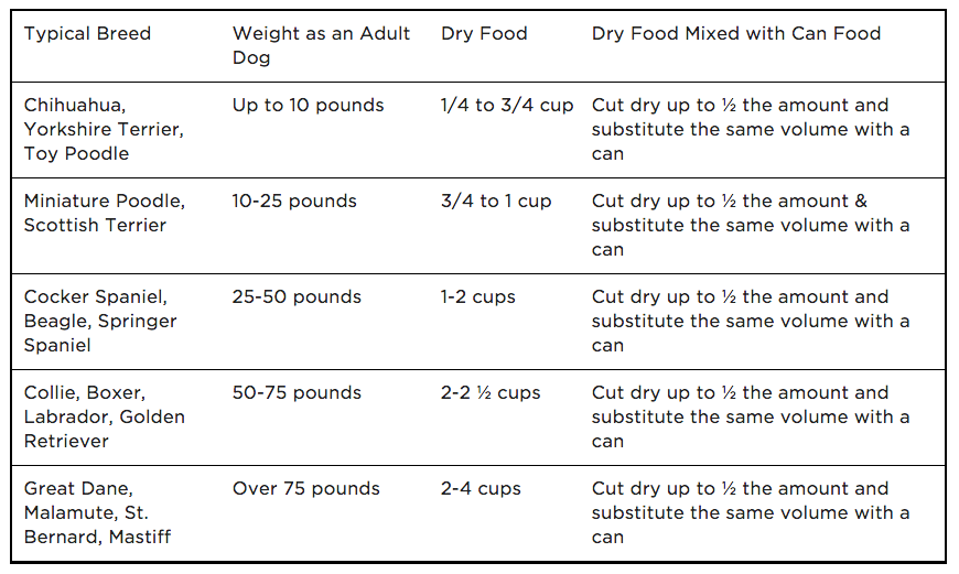 How much food dhould you feed your dog - Example Dog Feeding Chart