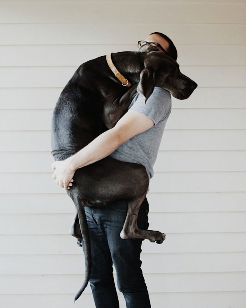 31 Heart Warming Images Showing The Magical Bond We Have With Our Dogs 12
