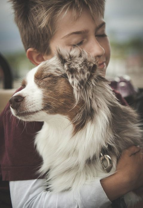 31 Heart Warming Images Showing The Magical Bond We Have With Our Dogs 13