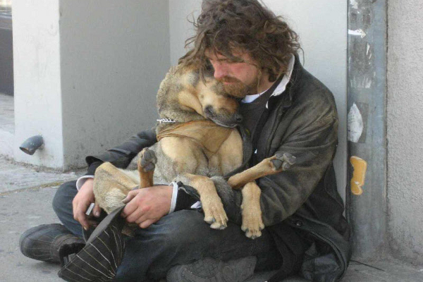 31 Heart Warming Images Showing The Magical Bond We Have With Our Dogs 22