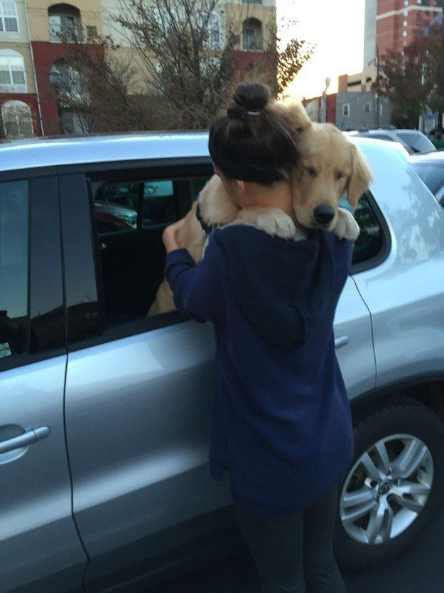 31 Heart Warming Images Showing The Magical Bond We Have With Our Dogs 7